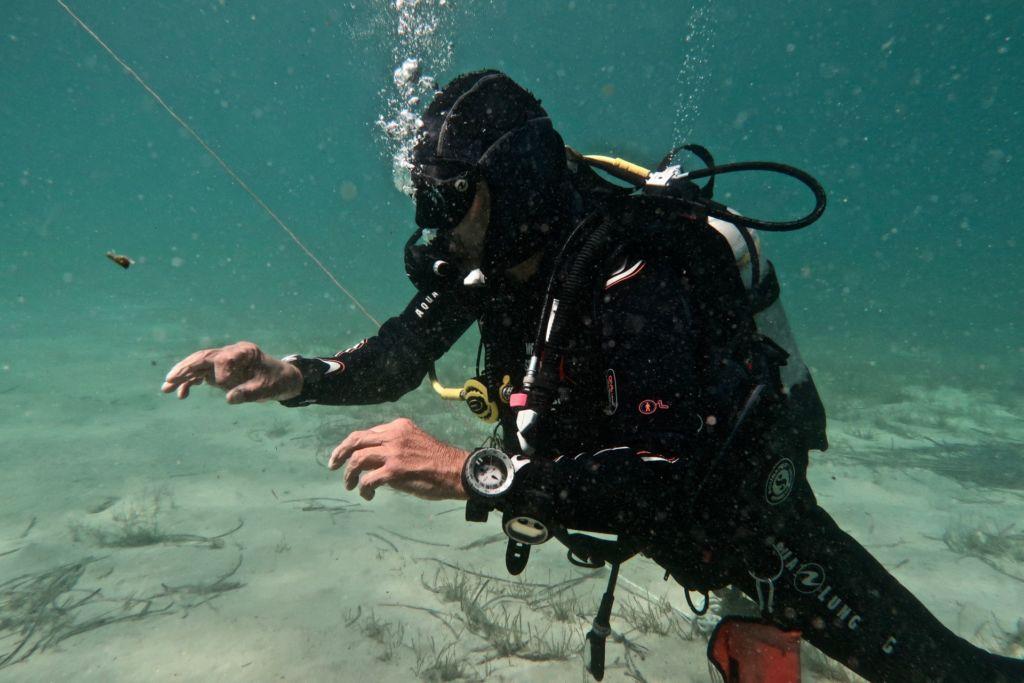 scuba diving pierdere de grăsime)